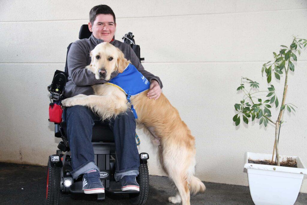 mon histoire de comportementaliste educateur dresseur canin